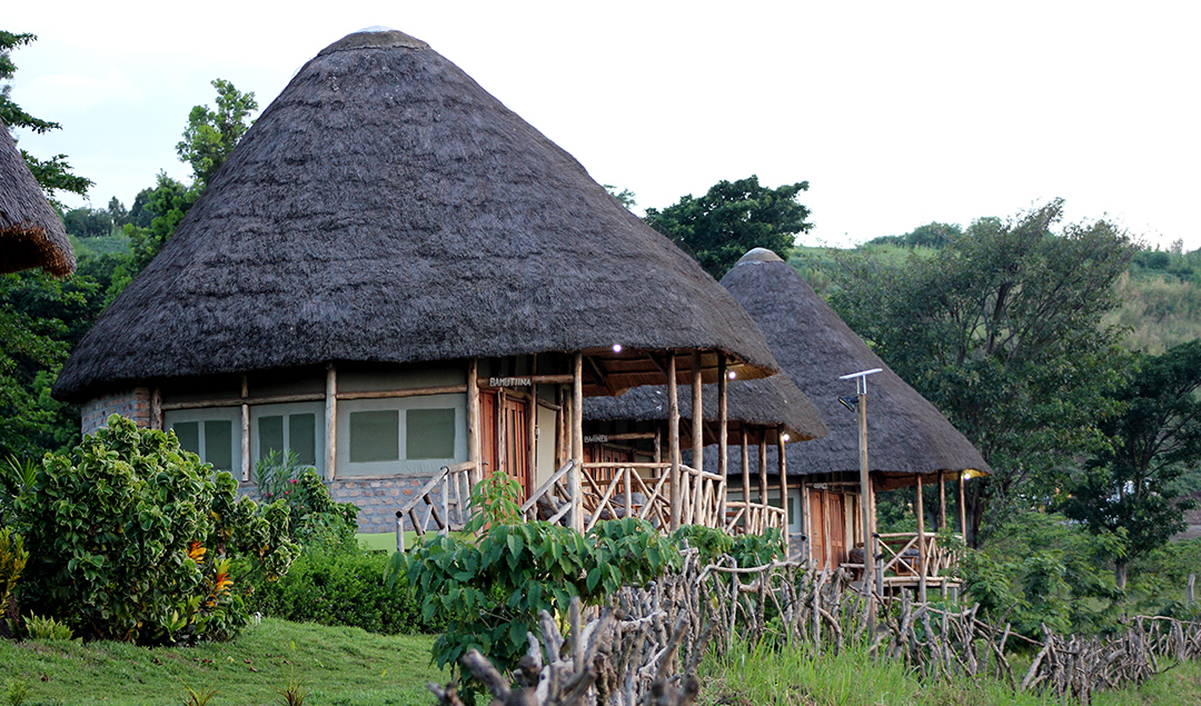 Elephant Hab Lodge, Accommodation In Queen Elizabeth park