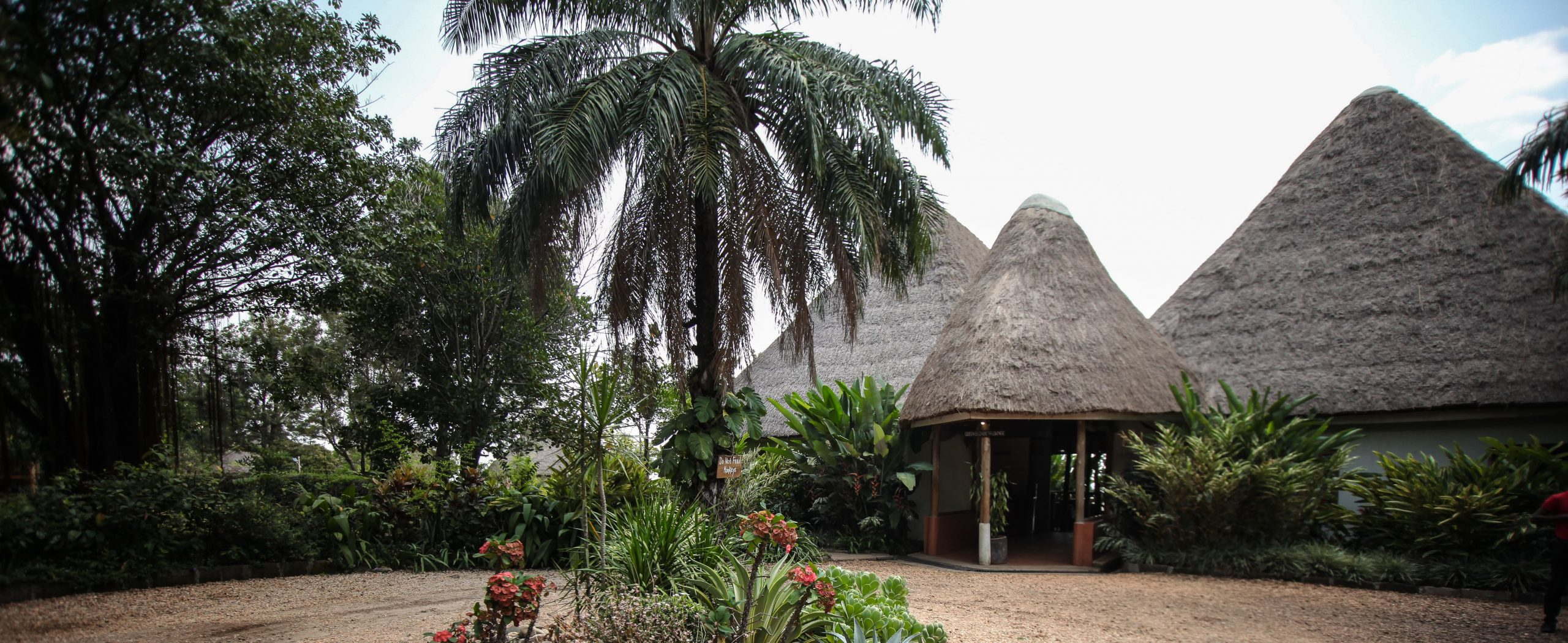 Overview of Elephant Hab Lodge
